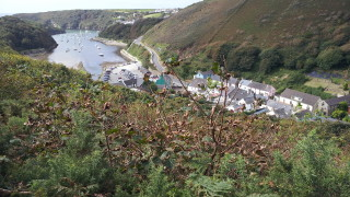 View of Solva harbour from The Gribbin